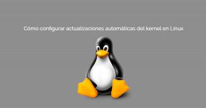 Actualizaciones automáticas del kernel en Linux
