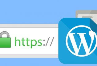 6439Cómo activar SSL y HTTPS en WordPress